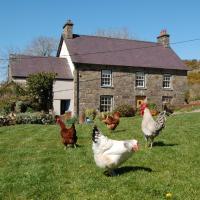 Nantgwynfaen Organic Farm B&B Wales