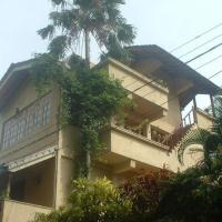 Palmtree Haus