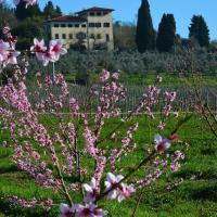 Agriturismo Il Frassine