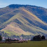Picturesque Village in Transylvania