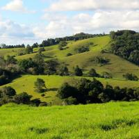 Maleny Springs Farm