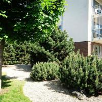 Apartment close to Cathedral Square