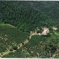 Villa Con Piscina Le Belle Rane