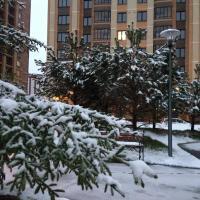 Apartments on Derzhavina 47