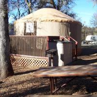 Lake of the Springs Camping Resort Yurt 4