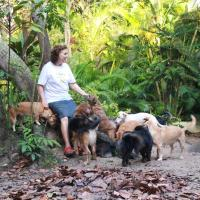 Nature Retreat with Healing Dogs in Brazil