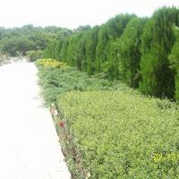 Eco Complex Dobri Dol