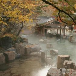 Properties with Onsen  28 properties with onsen in Saga