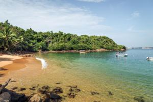 Image of Jungle Beach