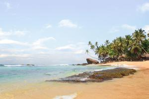 Image of Dalawella Beach