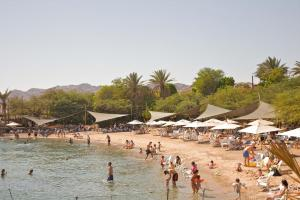 Image of Dolphin Reef Beach