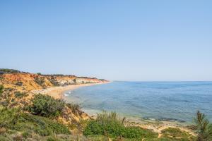 Image of Falesia Beach