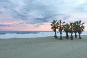 Image of Coma-Ruga Beach
