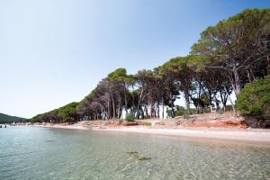 Image of Mugoni Beach