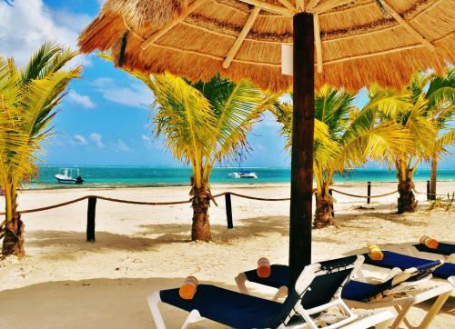 Arrecifes Suites Puerto Morelos Q. Roo