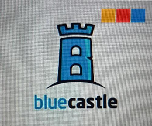 Blue Castle Rentals